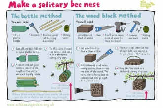 Make a solitary bee nest