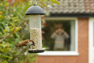 Hanging Bird Feeder wildlifetrusts_40555748138