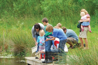 Pond dipping Idle Valley