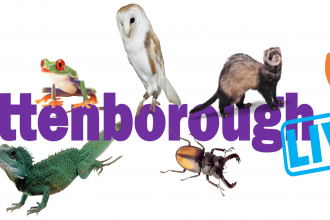 Attenborough Live