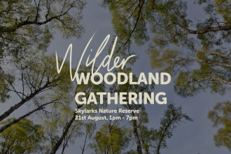 Wilder Woodland Gathering, Skylarks Nature Reserve, 21st August, 1pm-7pm