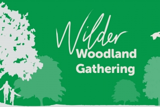 Wilder Woodland Gathering