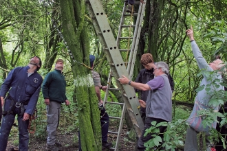 Ringing group and expert climbers monitoring a heronry