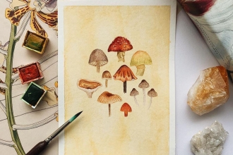 Mushrooms postcard show entry by @jannahart