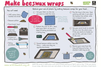 Activity Sheet: make your own beeswax wraps
