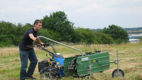 Haymaking at Beacon Hill NottsWT