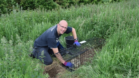 BEVS Badger vaccination