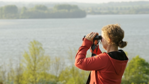Opticron/Birdwatching