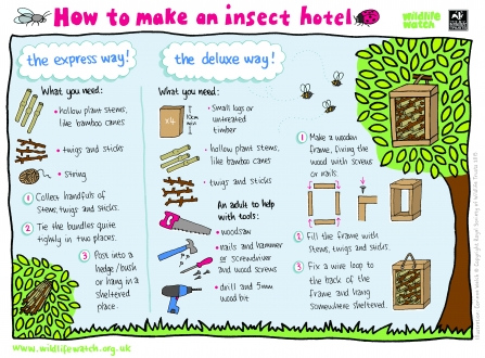 Insect hotel diagram