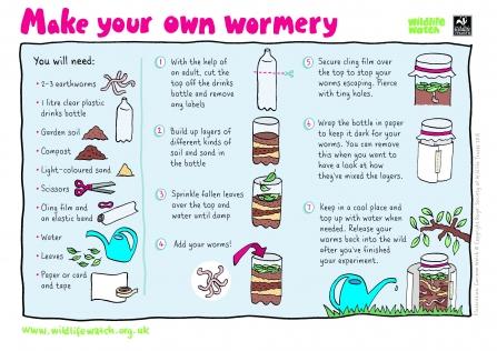Make your own wormery | Nottinghamshire Wildlife Trust