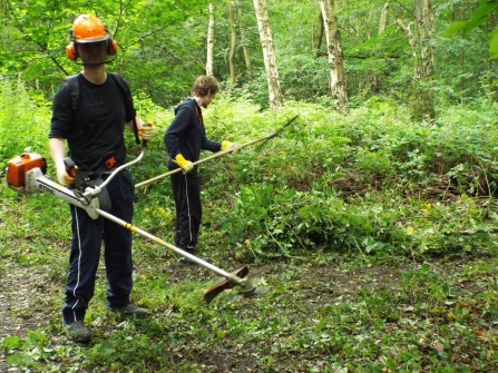 Young Roots habitat management - HLF