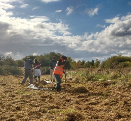 Volunteers collecting the arisings after mowing the meadow at Gresham Marsh