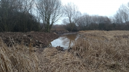 Gresham Marsh pond after conservation ground works had been carried out