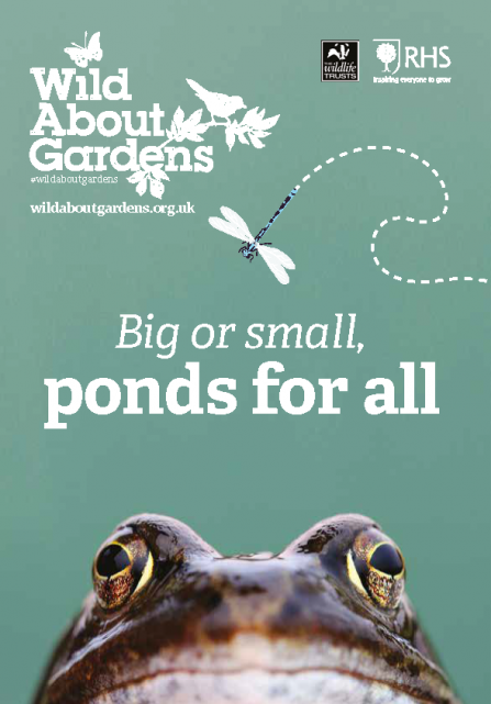 Big or small, ponds for all. Wild about Gardens RHS and The Wildlife Trusts free downloadable booklet