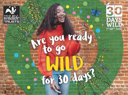Are you ready to go wild for 30 days?