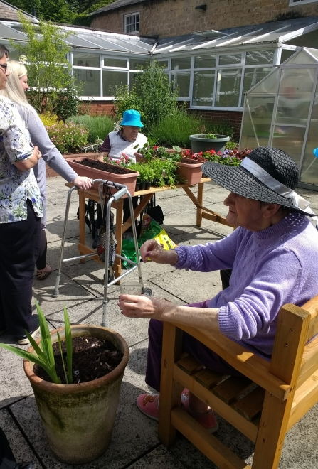 Langwith Lodge Residential Home residents planting pollinator friendly containers in their butterfly garden