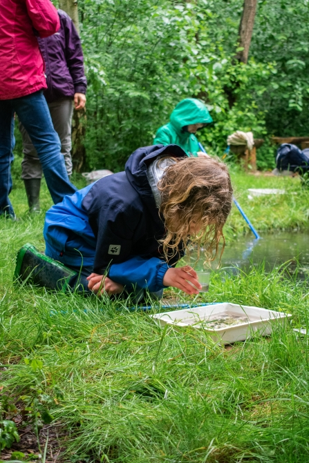 Rushcliffe pond dipping
