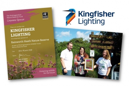 Corporate sponsor: kingfisher lighting