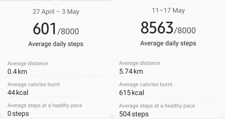 Alison's step count before and during the challenge