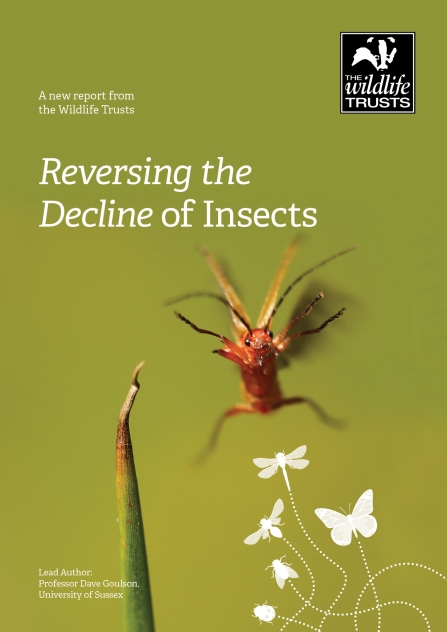 Reversing the Decline of Insects report cover July 2020