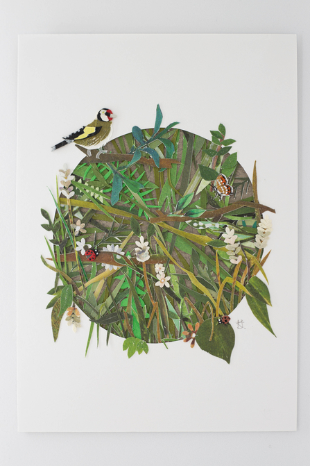 Postcard Show entry Natural Beauty. A circle of branches, leaves, thorns and flowers made from layers of paper also featuring a goldfinch, ladybird and butterfly.