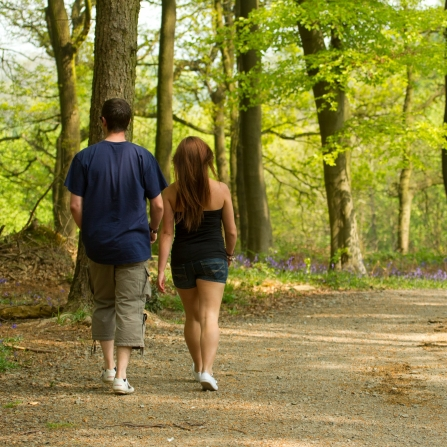 Couple walking down path through woodland, National Forest, Spring, 2011