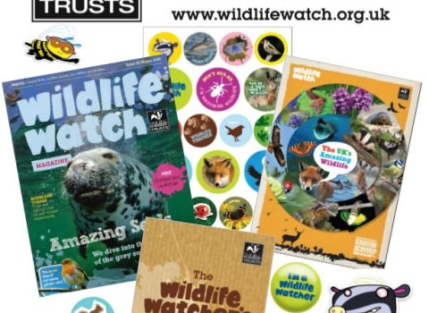Wildlife Watch Poster